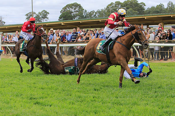 a horse falling over in a race